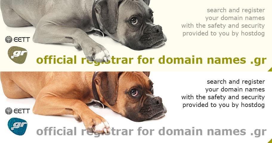 Official registrar for domain names .gr